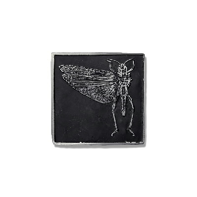 Locust - Belt Buckle