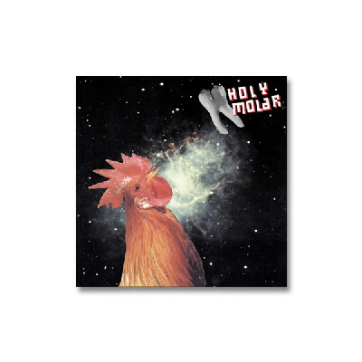 Holy Molar - The Whole Tooth... CD