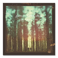 IMAGE | Fossil Collective - Tell Where I Lie CD