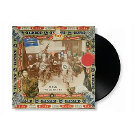 IMAGE | Dr. Dog - Dr. Dog-We All Belong LP - LP