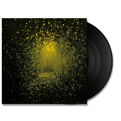 The Antlers - Burst Apart - LP (180 Gram)